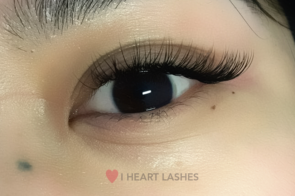 8169f9cd5fb 1 Sydney Eyelash Extensions - I HEART LASHES